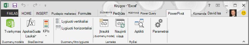 """""""PowerPivot"""" juostelė"""