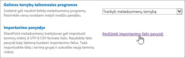 Peržiūrėti importuojamo failo pavyzdį