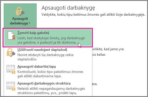 """""""Office 2016 Excel"""" žymėti kaip galutinį"""
