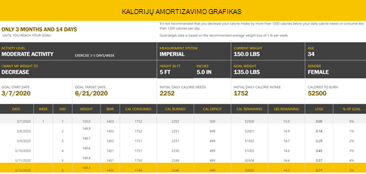 Kalorijų skaičiavimo tvarkaraščio šablono ekrano nuotrauka