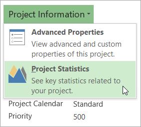 Projekto informacijos parinktys