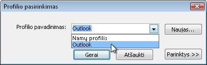 Profilio pasirinkimo dialogo langas
