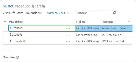 Duomenų lapo rodinys