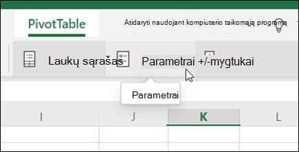 """Mygtukas parametrai skirtuke """"PivotTable"""" programoje """"Excel"""", skirta žiniatinkliui"""