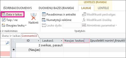 Datos / laiko lauko įtraukimas į duomenų lapo rodinį