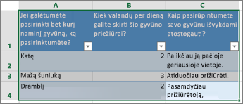 Norėdami spausdinti apklausos klausimus ir atsakymus, pažymėkite langelius, kuriuose yra atsakymai.