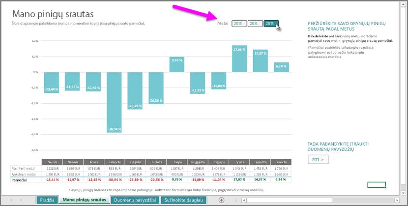 Mano pinigų srautų duomenų filtras pagal metus