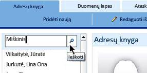žiniatinklio duomenų bazės ieškos teksto laukas