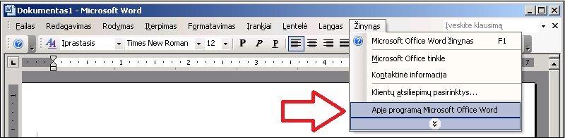 """""""Word 2003"""" žinynas, Apie"""