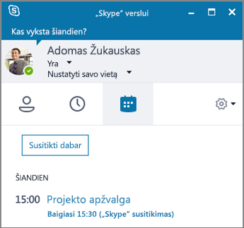 """Ekrano nuotrauka, vaizduojanti """"Skype"""" verslui lango skirtuką Susitikimai."""