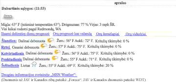 Duomenų rodinio MSN Orai