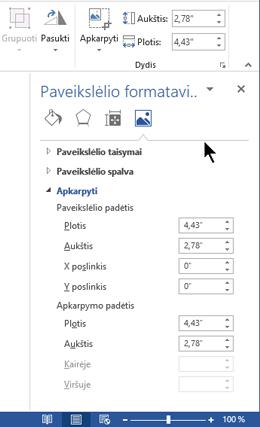 """Srities paveikslėlio formatavimas programoje """"Word"""" lango dešinėje pusėje, bakstelėkite šį mygtuką"""