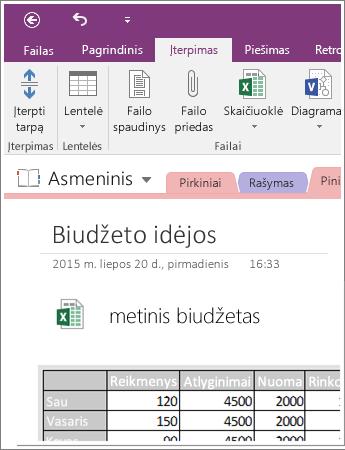 """Įterptos skaičiuoklės programoje """"OneNote 2016"""" ekrano nuotrauka"""