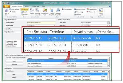 Verslo projekto įrašas, kuriame rodomos projekto užduotys
