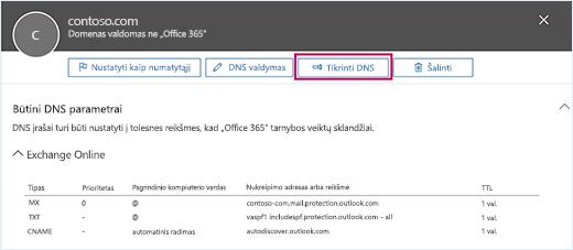 Ekrano kopijoje pavaizduotas Būtinų DNS parametrų puslapis, o įvesties vieta yra ant mygtuko Tikrinti DNS.