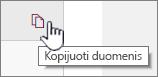 Spustelėkite piktogramą kopijuoti duomenis į dabartinio puslapio dalies duomenų kopijavimas