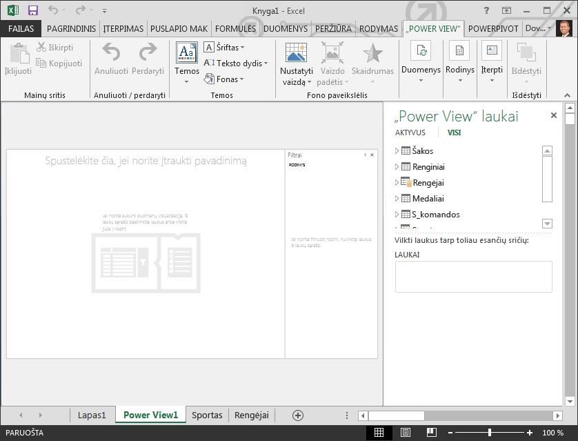 """Tuščia """"Power View"""" ataskaita programoje """"Excel"""""""