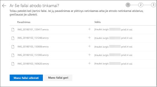 """Ekrano nuotrauka atlikite šiuos failus išvaizdos dešinėje ekrano """"OneDrive"""" žiniatinklio svetainėje"""