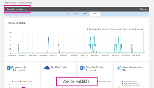 """""""Office 365"""" naudojimo ataskaitų sritis"""