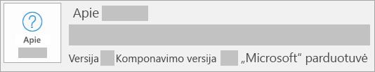 """Ekrano kopija, kurioje rodoma, kad versija ir komponavimo versija yra """"Microsoft Store"""" įdiegtis"""