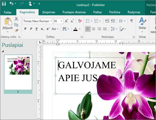 """Ekrano nuotrauka, vaizduojanti teksto lauką """"Publisher"""" failo puslapyje."""
