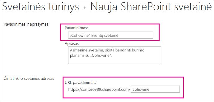 Pavadinimo lauke įveskite antrinės svetainės pavadinimą, URL lauke įveskite kliento vardą, kad įtrauktumėte jį į svetainės URL.