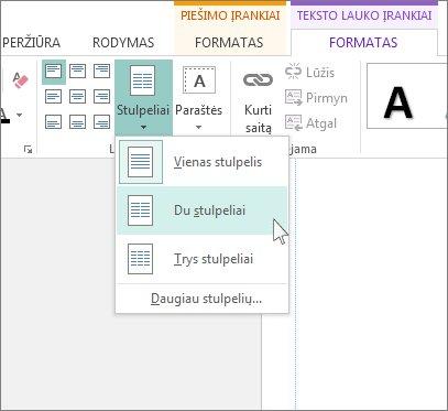 """""""Publisher"""" teksto lauko įrankių stulpelių ekrano nuotrauka."""