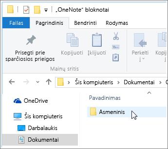 """""""Windows"""" aplanko Dokumentai su matomu """"OneNote"""" bloknotų aplanku ekrano kopija."""