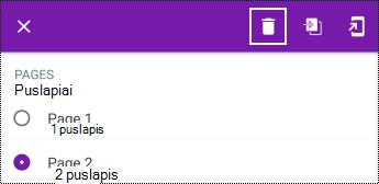 """Puslapio naikinimas kontekstiniame meniu programoje """"OneNote"""", skirta """"Android"""""""
