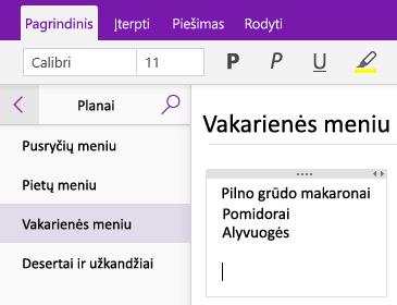 """Pastabų konteinerio puslapyje programoje """"OneNote"""" ekrano nuotrauka"""