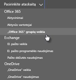 """Ekrano nuotrauka: Pasirinkite ataskaitą – """"office 365"""" grupės"""