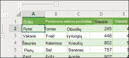 """""""Excel"""", skirtos žiniatinkliui iš duomenų grupės/išgrupuoti, taikyti eilučių ir stulpelių struktūros lygius."""