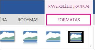 Paveikslėlio įrankių juostos formatavimo parinkčių vaizdas