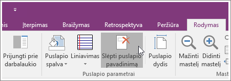 """Mygtuko Slėpti puslapio pavadinimą programoje """"OneNote 2016"""" ekrano nuotrauka."""
