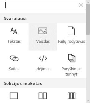 """Vaizdo puslapio dalies pasirinkimo programoje """"Sharepoint"""" ekrano kopija."""