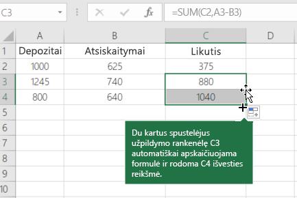 Vykdomos balanso skaičiavimo pavyzdys