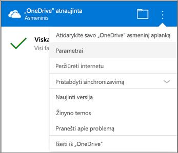 """""""OneDrive"""" sinchronizavimo centras Daugiau parametrų"""
