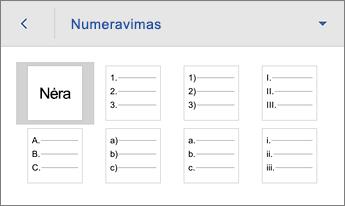 Numeravimo komanda, rodomos formatavimo parinktys