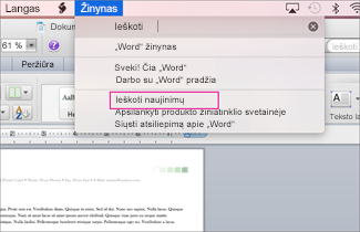 Office for mac menu screenshot