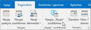 """""""Skype"""" verslui susitikimo planavimas"""