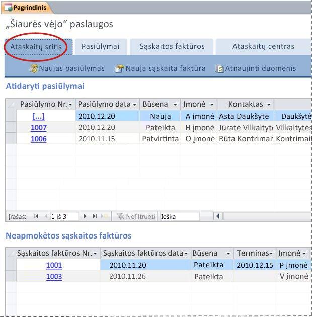"""""""Services"""" duomenų bazės šablono skirtukas Ataskaitų sritis"""
