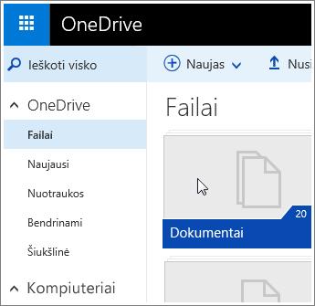 """Dokumentų aplanko """"OneDrive"""" ekrano nuotrauka"""