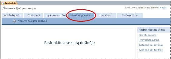"""""""Services"""" duomenų bazės šablono skirtukas Ataskaitų centras"""