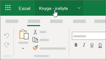 """Žymiklio žymėjimas failo vardas programoje """"Excel"""""""