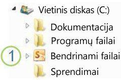 """Bendro naudojimo aplanko piktograma """"Windows Explorer"""""""