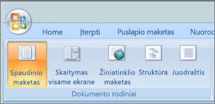 Ekrano kopijoje rodomas grupės dokumento rodiniai su pažymėta parinktimi spaudinio maketas. Kitos galimos parinktys yra visas ekranas skaitymas, žiniatinklio maketas, kontūras ir Juodraštis.