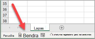 """""""Excel"""" būsenos juosta, kurioje rodoma """"bendrąja"""" jautrumo žyma, buvo pritaikyta"""