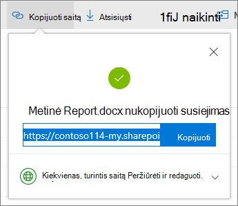 """Kopijuoti saitą į """"OneDrive"""" verslui"""