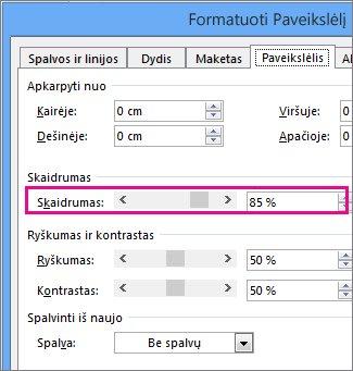 """""""Publisher"""" dialogo lango Paveikslėlio formatavimas ekrano nuotrauka"""