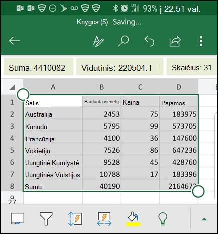 """""""Excel"""" konvertavo duomenis ir grąžina jį į tinklelį."""